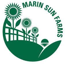 Marin Sun